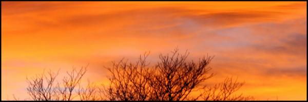 Fall Sunset Banner 60x20