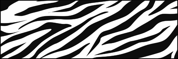 Zebra Stripes Banner 60x20