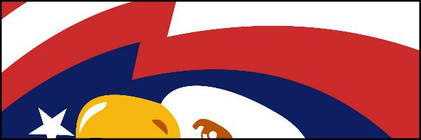 Bald Eagle Banner 60x20