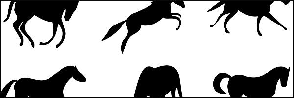 Horses Banner 60x20