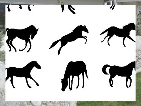 Horses Exterior Signs 24x18