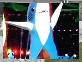 Left Shark Exterior Signs 24x18